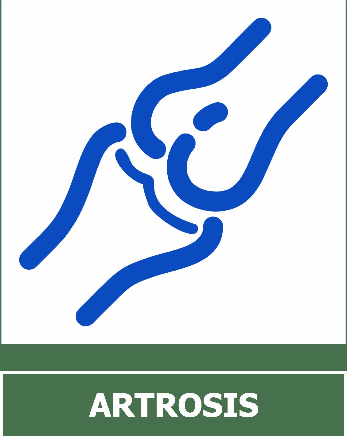 icono1a